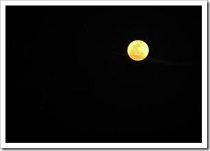 moon_0107web